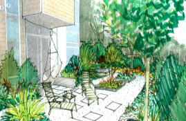 How to create a sustainable garden