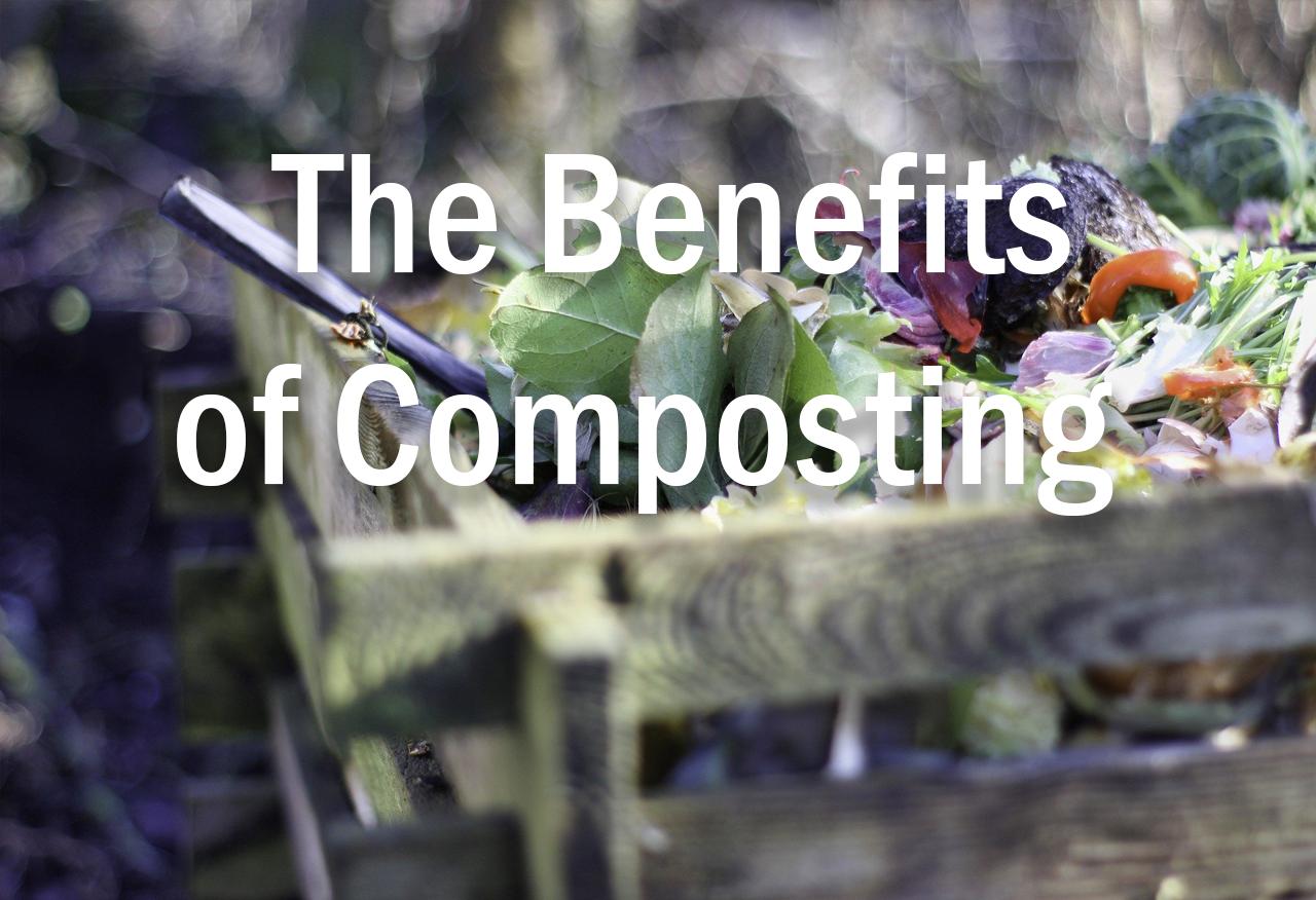 the benefits of composting header image