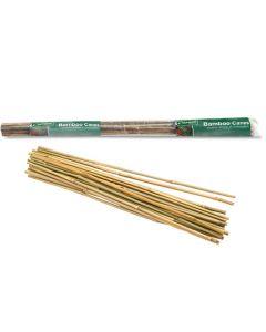 60cm Bamboo Sticks (25 Pack)