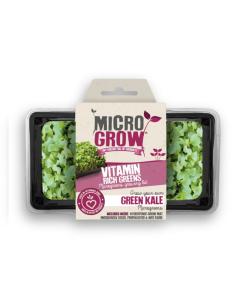 Micro-Grow Kit - Kale (Texael Green)