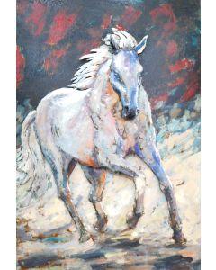 White Stallion | Metal Wall Art