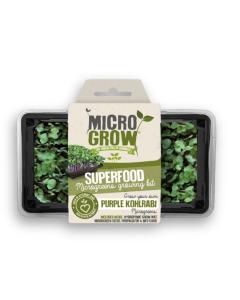 Micro-Grow Kit - Kohl Rabi