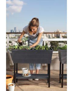 48L Urban Bloomer Planter/Raised Bed - Dark Grey/Anthracite