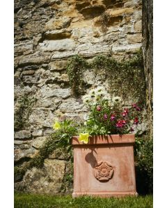 Heritage Collection Terracini Rose Box 35cm