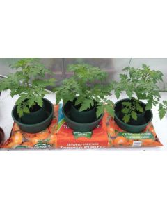 Tomato Grow Pots (3 Pack)