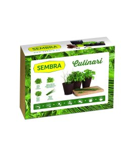 Culinary Herbs Growing Kit