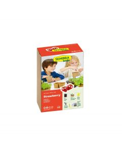 Strawberry Garden Growing Kit