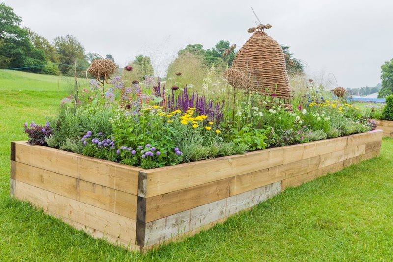 raised beds RHS