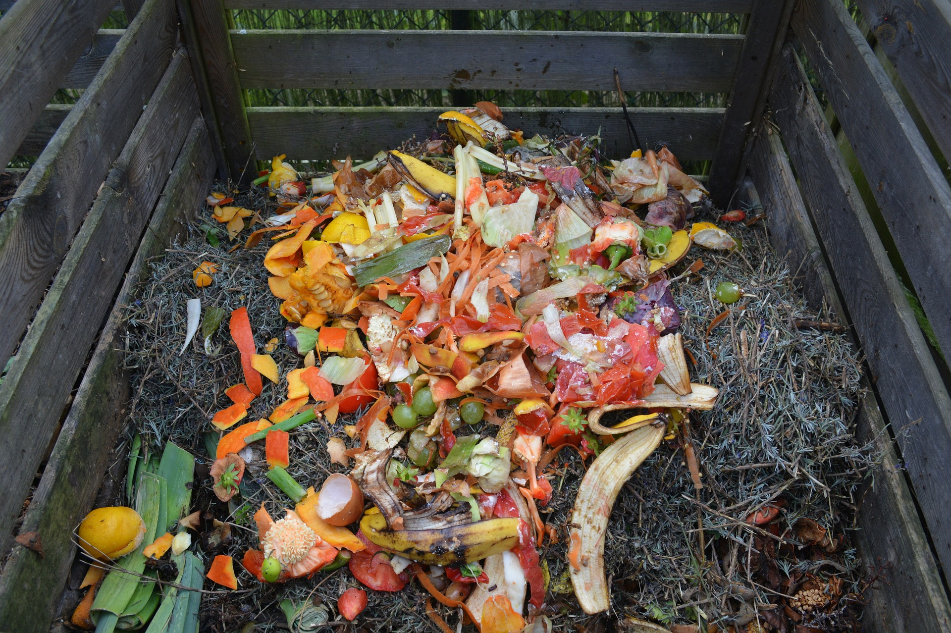 Green Composting Waste
