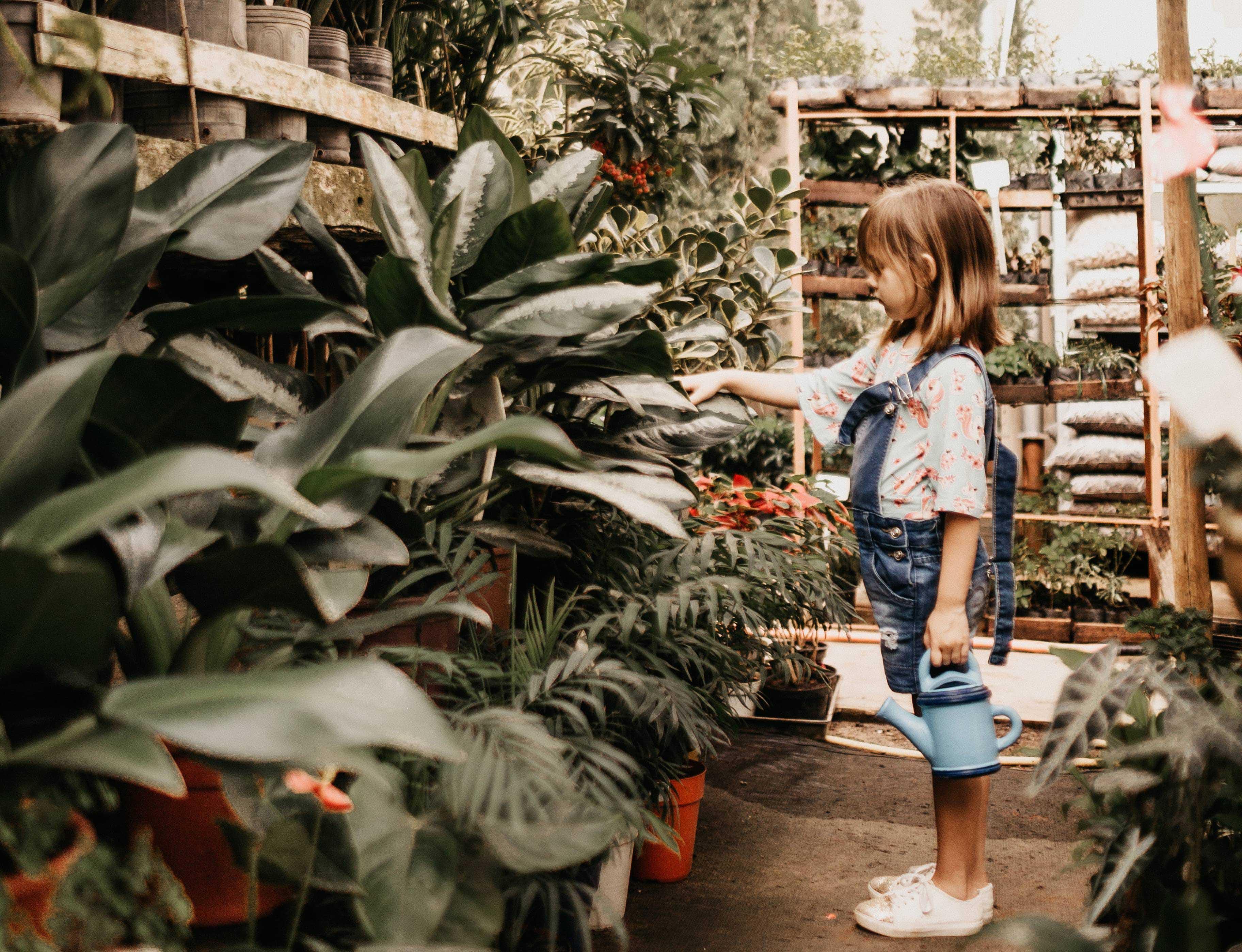 landscape childrens gardening
