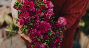 image of dark pink flowers